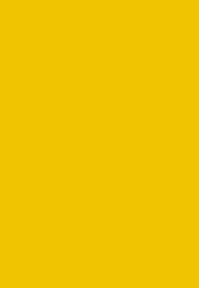 cassoa-gold2